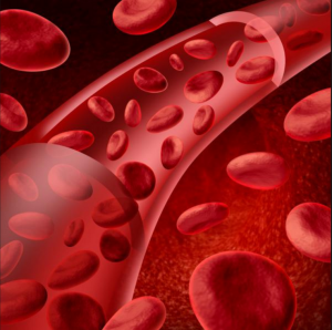 Great_Health_and_the_Blood_Stream_